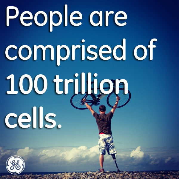 More food for thought on big numbers.