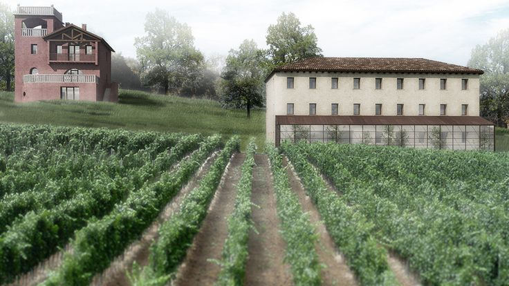 tenuta santa maria in montebelluna in progress #architecture #vineyard #zaa #rendering #visualization