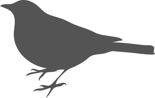 bird outline - Google Search