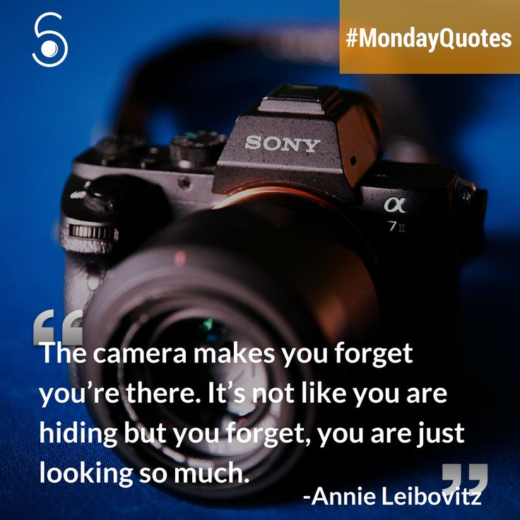 ❝The camera makes you forget when you're there. It's not like you are hiding but you forget, you are just looking too much.❞⠀ -Annie Leibovitz⠀