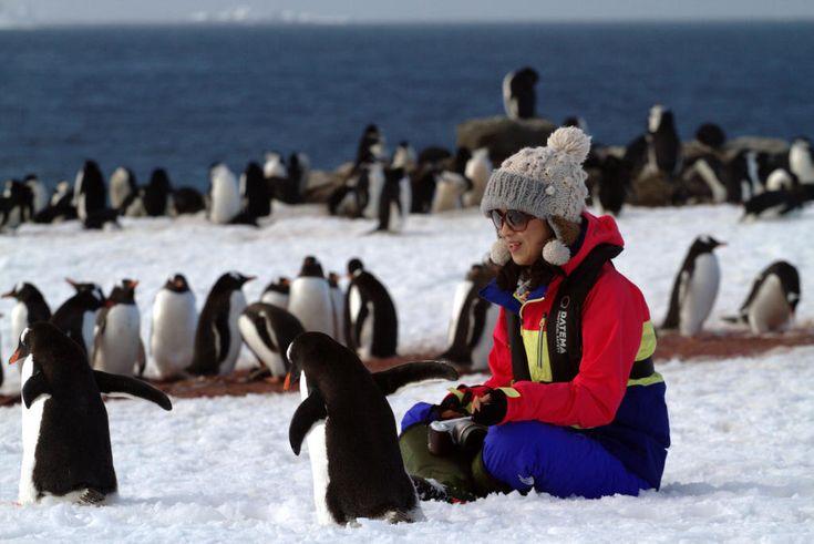 ¡Haz realidad tu #sueño de conocer la #Antártida! Anímate a la fabulosa #experiencia de subir a bordo de un #crucero de #expedición y #disfruta de hasta un 28% de #descuento en las tarifas hasta el 15 de septiembre de 2016. Cruceros a las #IslasMalvinas, #GeorgiasDelSur y #PenínsulaAntártica. #pinguinos ¡Consúltanos! http://goo.gl/c0rLHb