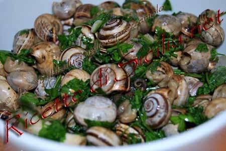 Babbaluci,snails sicilian food