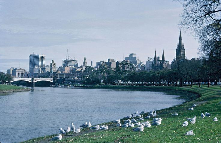 Yarra River 1964