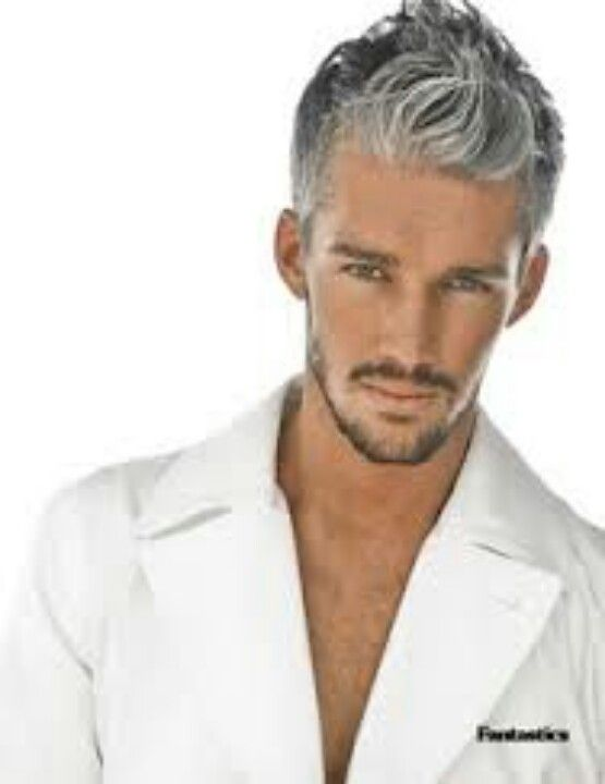 25 Best Ideas About Silver Hair Men On Pinterest Grey Hair