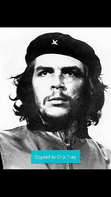 13 best che images on Pinterest Che guevara, Cher guevara and - würmer in der küche