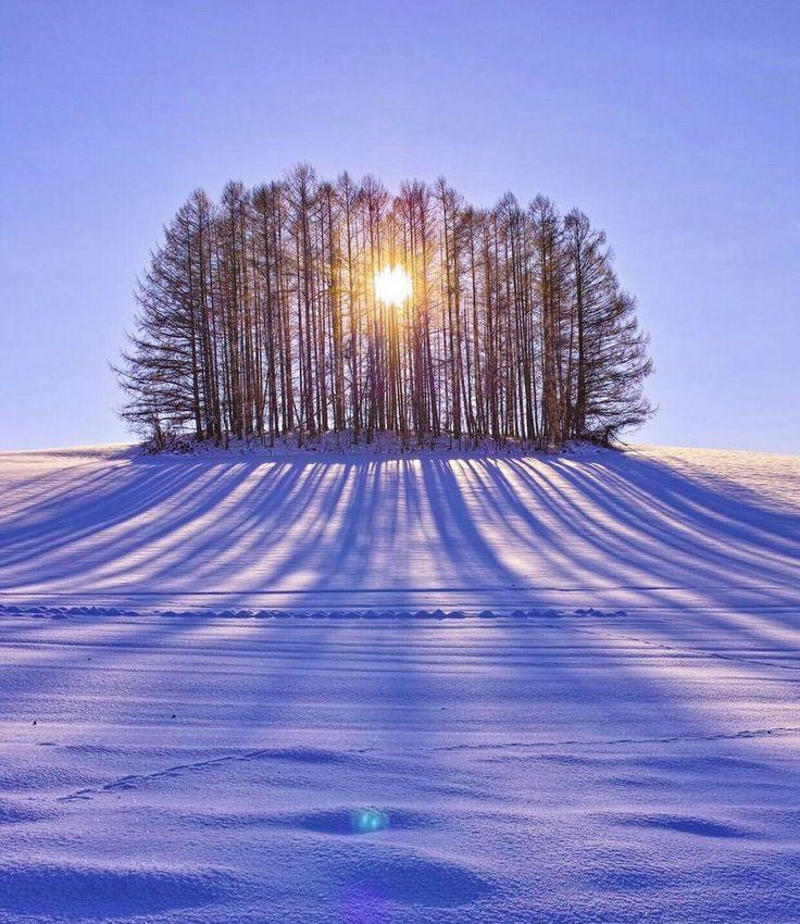Winter peace.