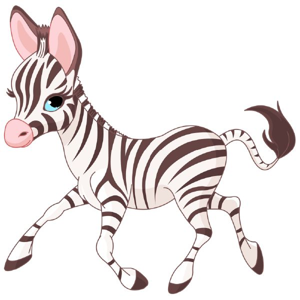 This darling little zebra just wants to visit Facebook to wish its friends a pleasant day.
