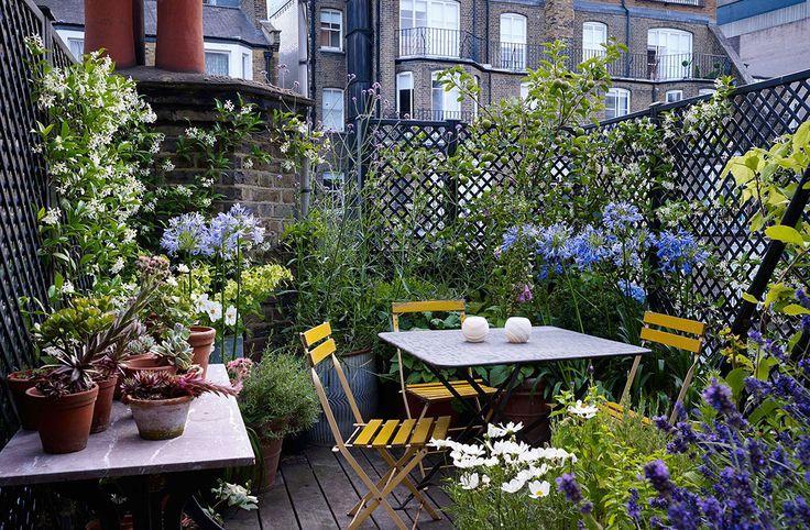 Ben's London house - Ben Pentreath Ltd