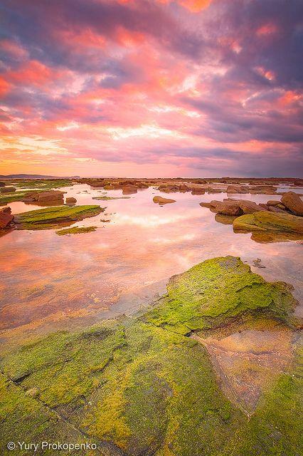 Sunrise at Long Reef, Sydney.