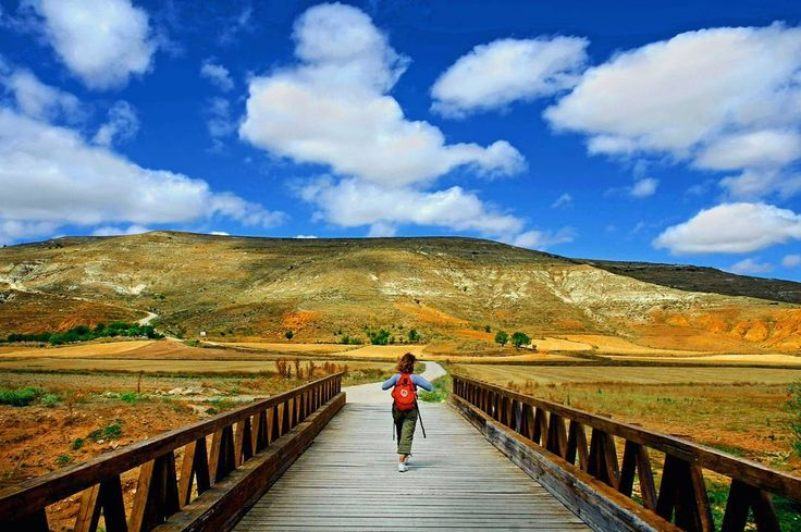Globetrotter  #benheinephotography #santiagodecompostela #pilgrimage #pelerinage #walk #marche #path #chemin #freedom #spain #espagne #camino #pilgrim #pelerin #photography #nature #globetrotter #hope #esperance #santiago #music #pilgrims #compostela (One of the pics I took during my pilgrimage in Spain)