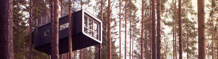 Boomhut vakantie 1 Een boomhut vakantie in Zweden