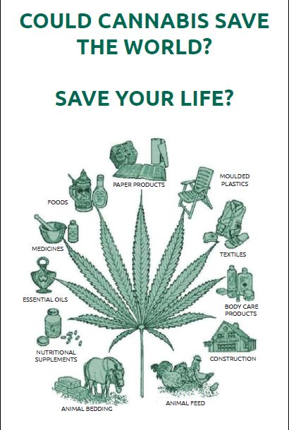 Cannabis medical information leaflet for ALL South Africans
