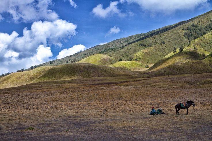 Padang Savana, Mount Bromo, Indonesia