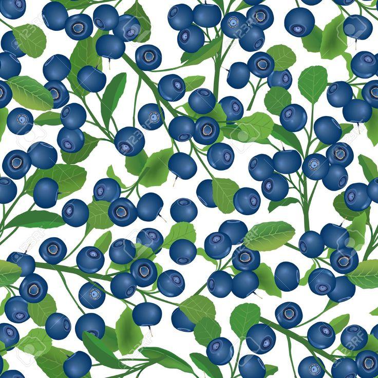 18320757-blueberry-bush-seamless-background-berry-pattern.jpg (1300×1300)