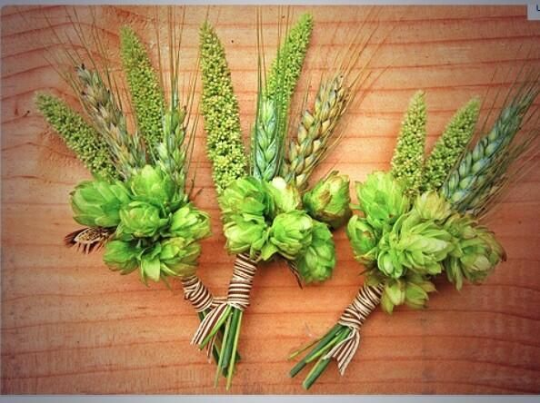 Wedding ideas beer lover? Try a HOPS wedding.. brewmasters? #Colorado Ladies so amazing  bridesmaids bouquet