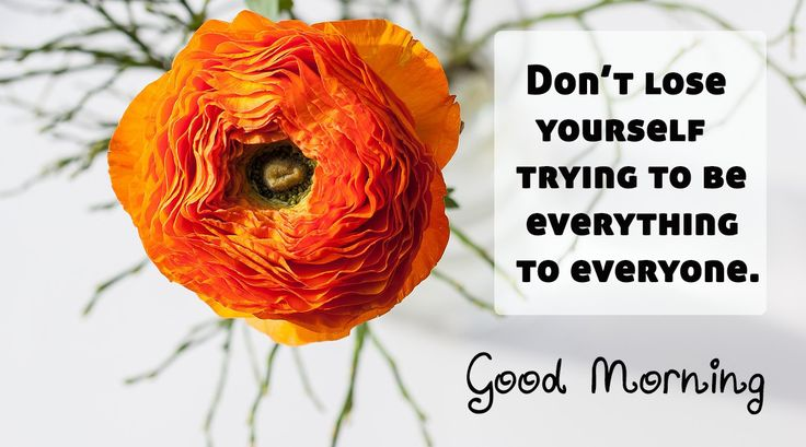 Good Morning: Don't lose yourself trying to be everything to everyone  #goodmorning
