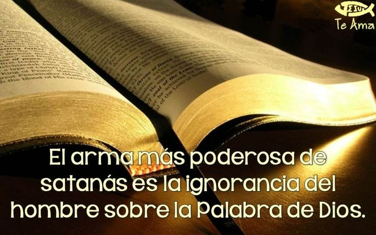 Lee la Biblia! facebook.com/jesusteamamgaministries