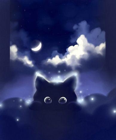 Buona notte!!!