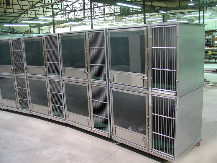 1000 ideas about dog kennel designs on pinterest dog for Dog kennel layouts