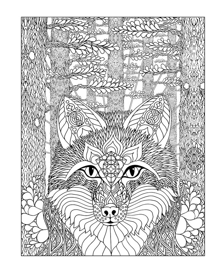 574 Best Coloring Zentangle Doodle Animals Images On Pinterest
