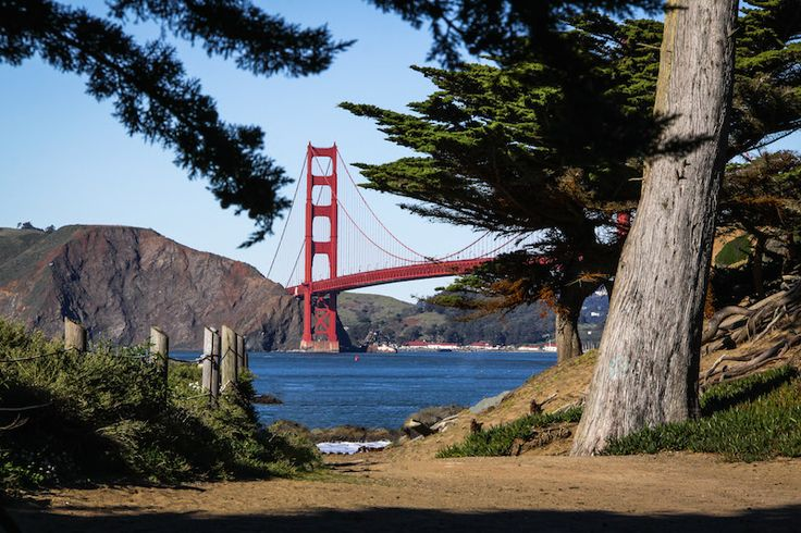 Lands End Trail--you can see the entire bay and beautiful Golden Gate Bridge. Other notable landmarks on the trail include the Cliff House Restaurant (which has quite a fiery history), the Sutro Baths, several secluded coves, and the mysterious Lands End Labyrinth.