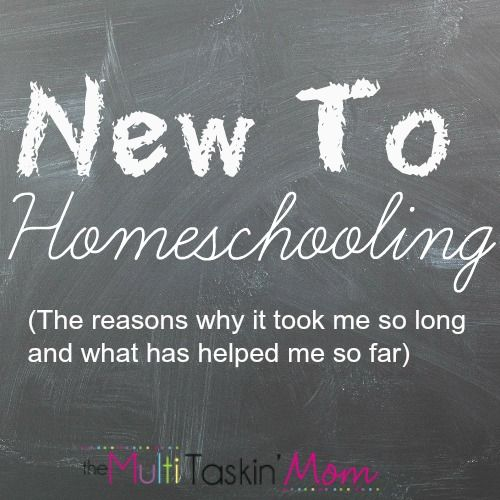 Being new to the homeschooling scene is scary. Bridget is sharing some thoughts on this very thing and sharing some things she has found to be helpful.