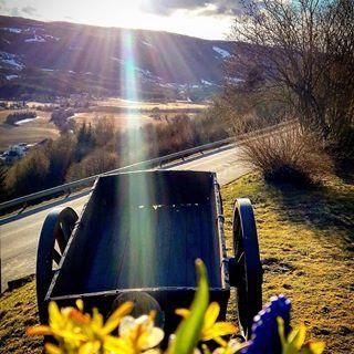 Flott dag idag. Endelig litt sol og varme. Ikke blåser det heller. Helt utrolig. 🌞🌞🌷🌷🌼🌼Fin lørdagskveld til alle mine gode insta venner.😍😍😚#segalstadbru #gausdal #flottestebygda #delnorge #dreamynorway #photoftheday #wu_norway #gdbilder #eastnorway2day #visitoppland #norway2day #mittfriluftsliv #mynorwegianhome #bygdakalender18#photo_smiles_world #fotofanatics_nature_ #beauty_of__nature_ #fotocatchers