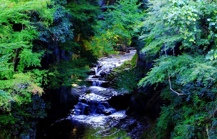 (1枚目の画像)話題のきっかけは1枚の写真!都心から1時間の秘境「濃溝の滝」が神秘的なまでに美しい - Find Travel
