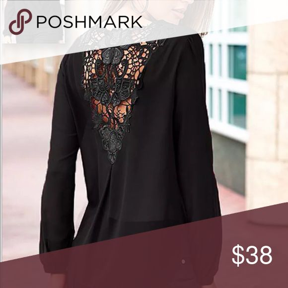 Sheer Lace Back Chiffon Blouse Beautiful sheer blouse with pretty lace down the back.  You will want to wear a nude bandeau or camisole underneath, but the wow! is worth it! Tops Blouses