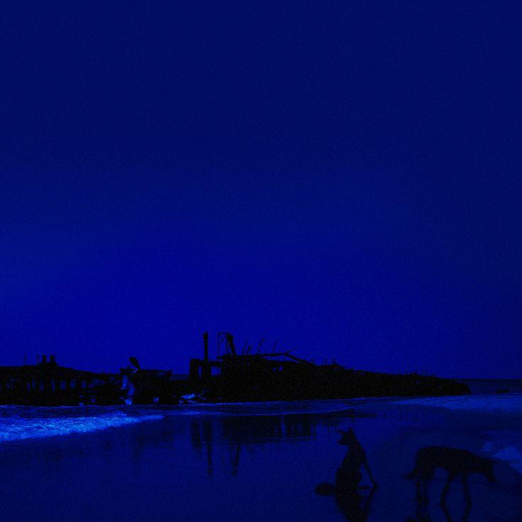 THERE THERE/FUBAR from BATTLE RATTLE by NABIL SABIO AZADI. #NSAdiary #NSAbattlerattle #Fraser #Island #shipwreck #blue #dingo #dog