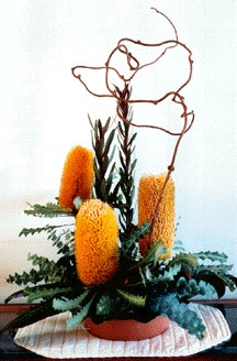 Gorgeous colors & shapes: Banksia Ashbyi, Curly Willow, Leucadendron Safari Sunset  - More Great Ideas from DriedDecor.com
