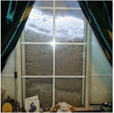 video de le tempête et photos de la neige à Buffalo   tempete de neige a buffalo lake effect 13