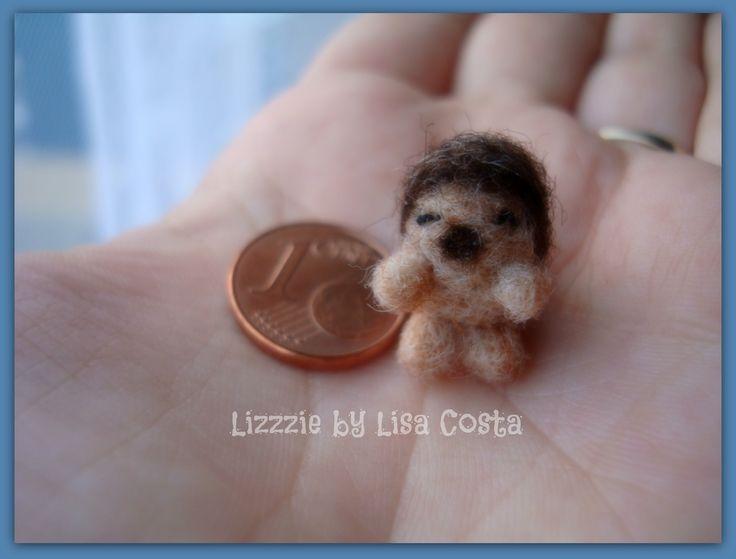Micro-riccio (hedgehog)