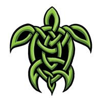 Google Image Result for http://www.tatsandtags.com/images/celtic-turtle-tattoo.jpg