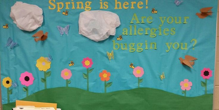 spring is here  are your allergies buggin you