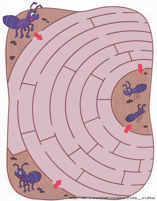 doolhof thema mieren / labirinti_detyam