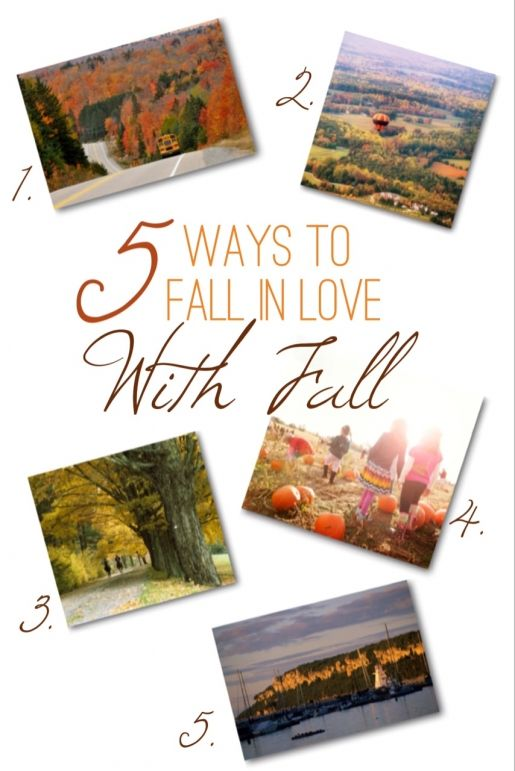 {Try} Five Ways to Fall in Love with Fall in Rural Ontario