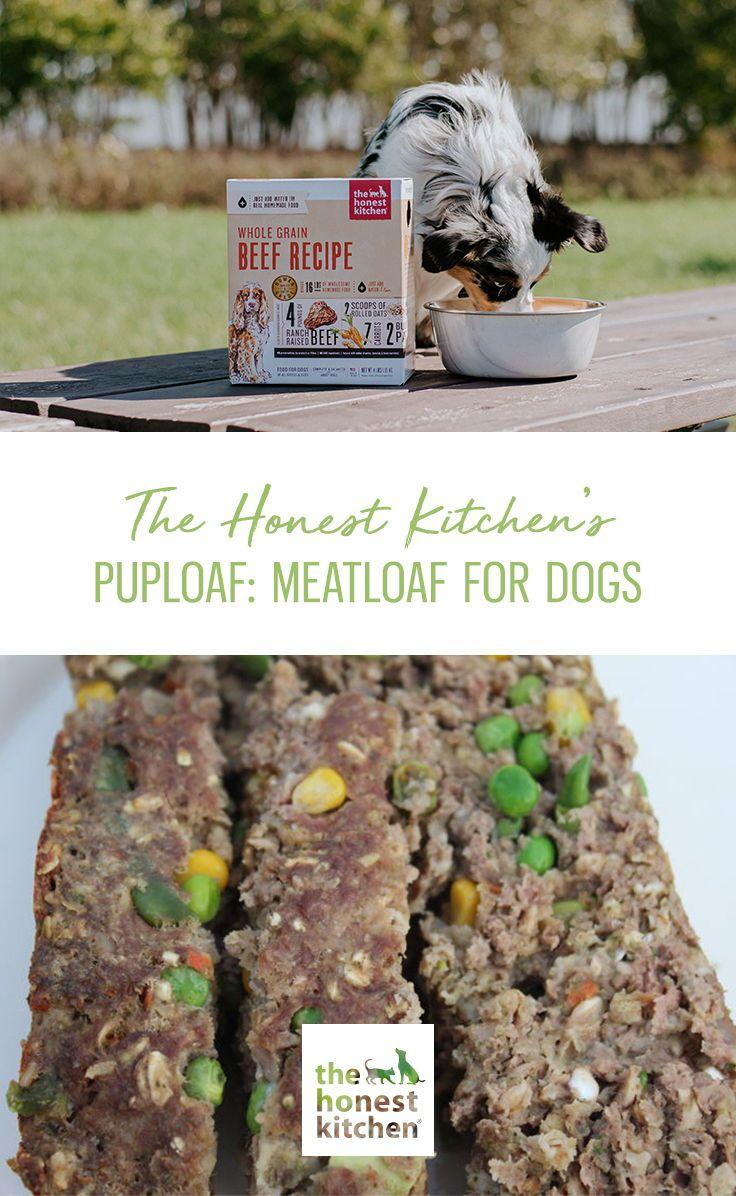 Puploaf Beef Or Turkey Meatloaf Recipe For Dogs The Honest Kitchen Blog Recipe Meatloaf Best Dog Food Healthy Pet Food