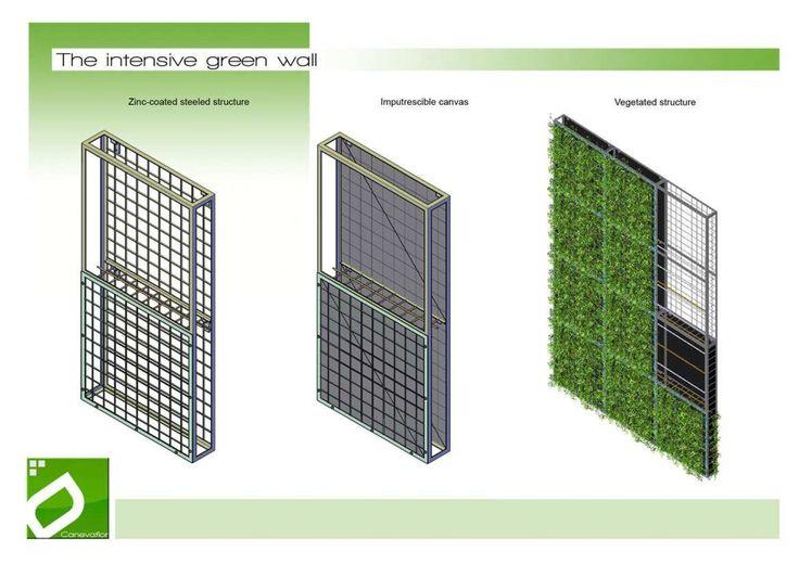 Green wall fergus li green wall pinterest green walls for Jardin vertical artificial