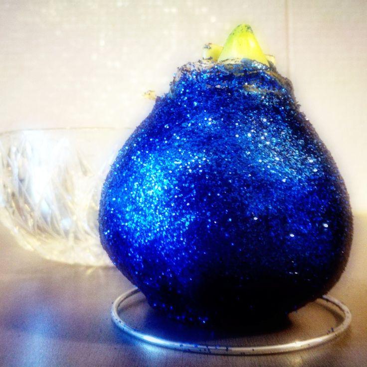 Vaha-amaryllis on kukka, joka kasvaa ilman vettä ja multaa. Tästä mallista odotellaan valkoista kukkaa ja sinivalkoista asetelmaa Suomi 100-hengessä.