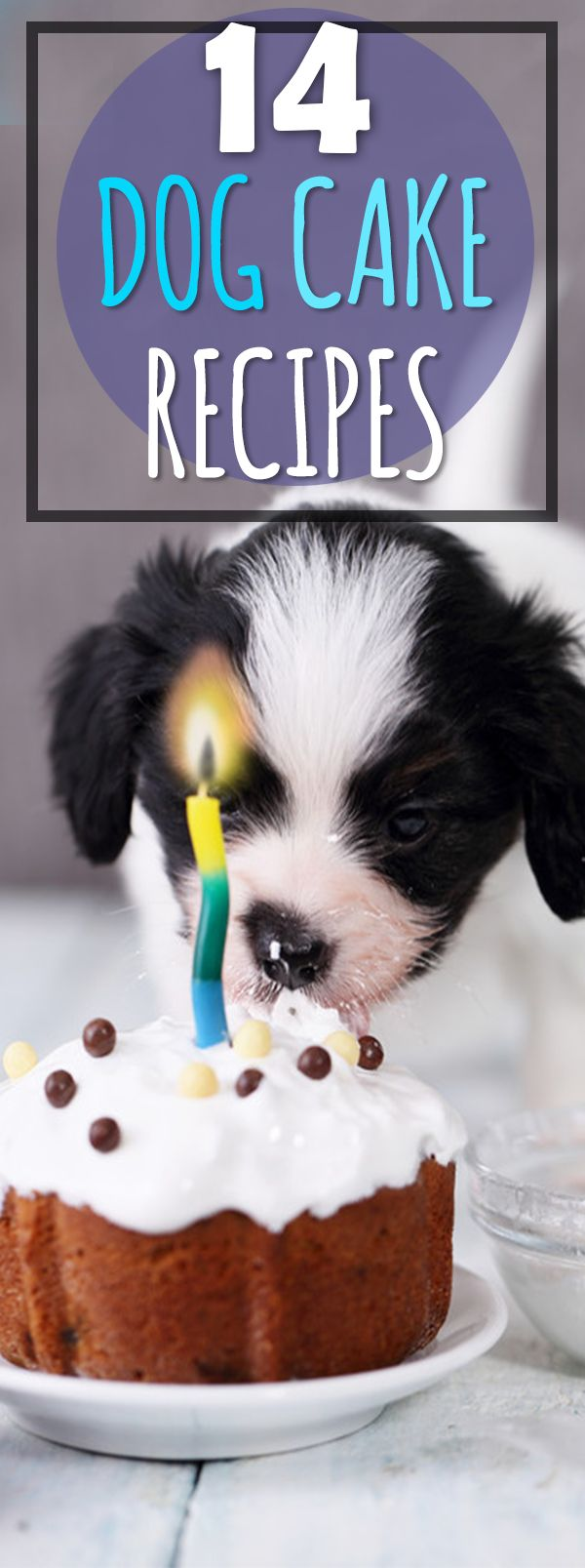 These are so cute and just amazing to see :)  Look at these 14 beautiful cakes just for doggies. Not to mention they're very easy to make - and thankfully dogs aren't too picky. But why not spoil your fur-baby a little?