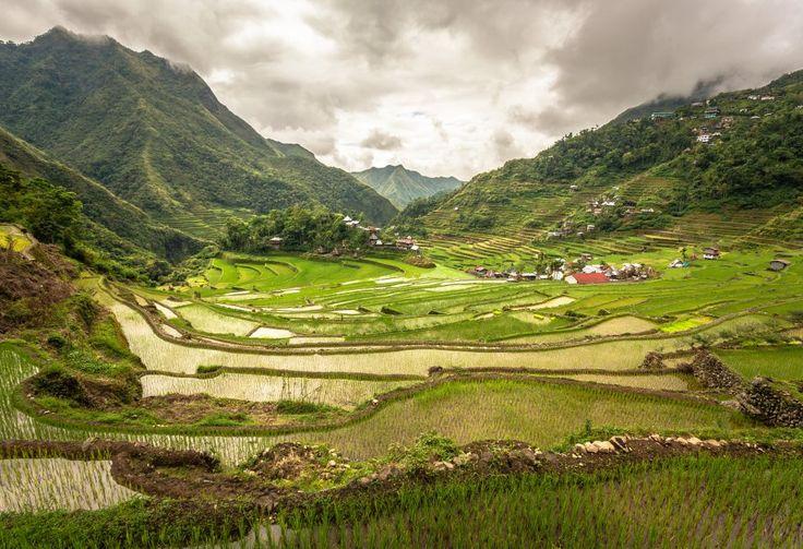 Les rizières en terrasse philippines de Banaue