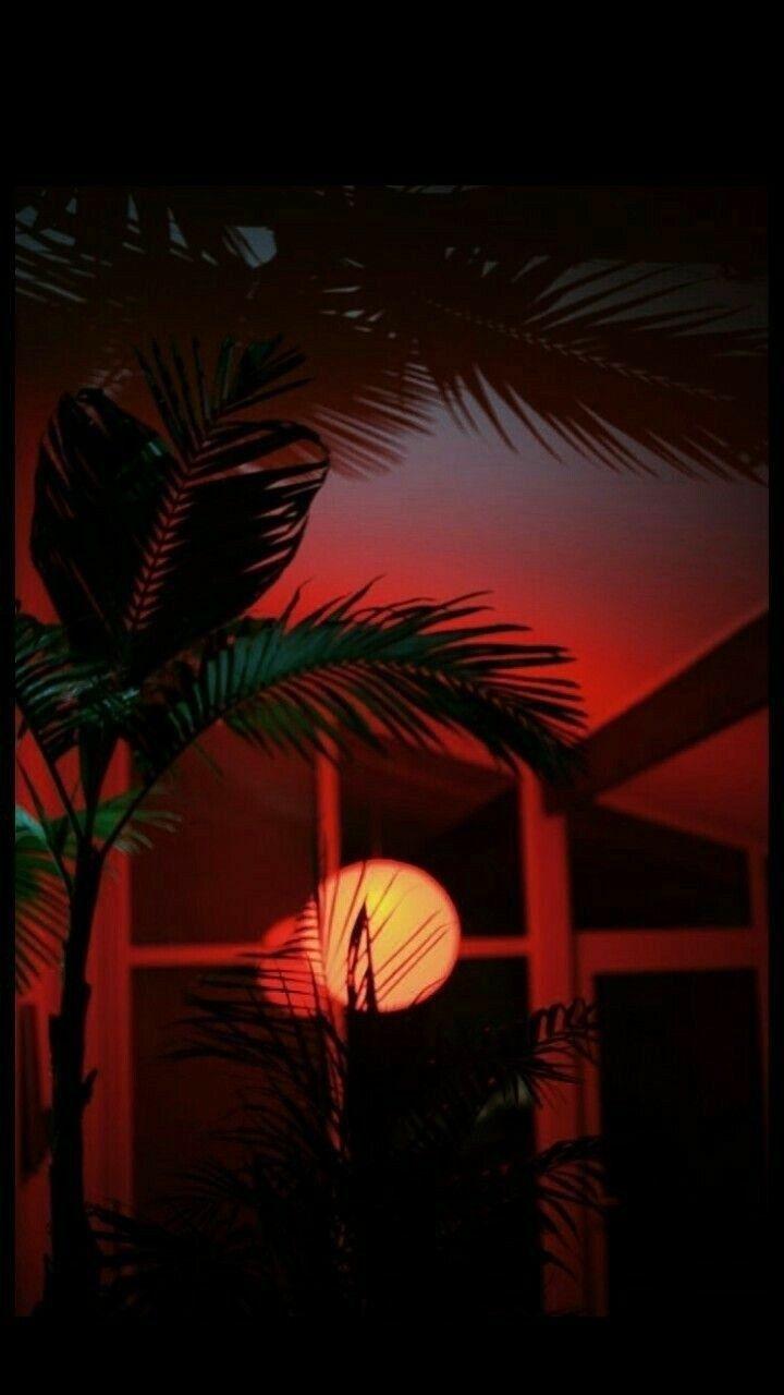 #ретро#арт#обои#неон#ночь#обоинателефон#обоинаайфон#night# ...
