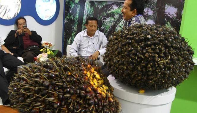 Pemerintah Amerika Serikat (AS) sambut baik komitmen para produsen minyak kelapa sawit Indonesia untuk tidak merusak hutan (deforestasi) dalam memperluas lahan produksi mereka. Komitmen ini dibubuhkan dalam suatu penandatanganan ikrar khusus. Dalam keterangan yang disampaikan lewat rekaman video, Duta Besar AS untuk Indonesia, Robert Blake, menyambut baik penandatanganan Ikrar Minyak Sawit Indonesia. Penandatanganan yang berlangsung 24 September lalu