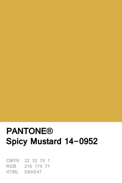 Pantone 2016 Spicy Mustard                                                                                                                                                                                 More