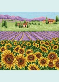 free PDF sunflower and lavender field.