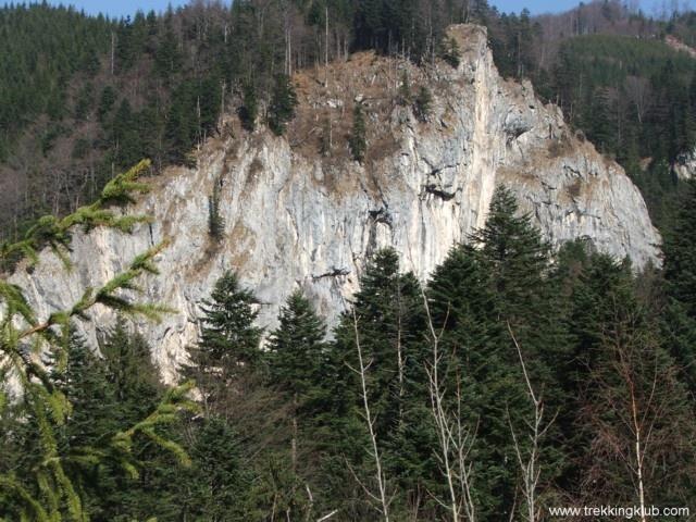 Bear's ravine - #Piatra_Mare_mountains, #Transylvania