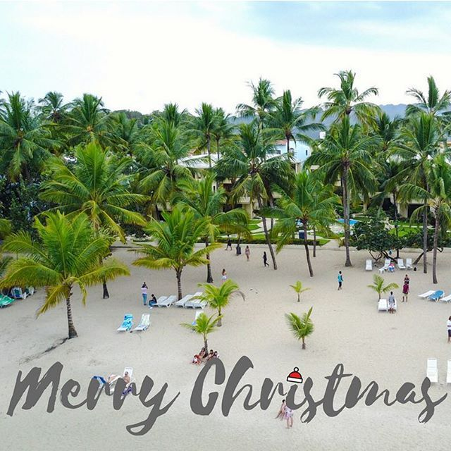 Merry Christmas From All Us Of Here At Cabarete Palm Beach Condos We Hope You Re Having The Most Wonderful Day