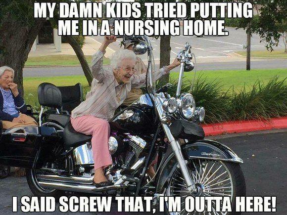 Best Harley Riding Memes Let S See Em Page 7 Harley Davidson Forums Harleydavidsonbike Happy Birthday Motorcycle Birthday Wishes Funny Birthday Wishes