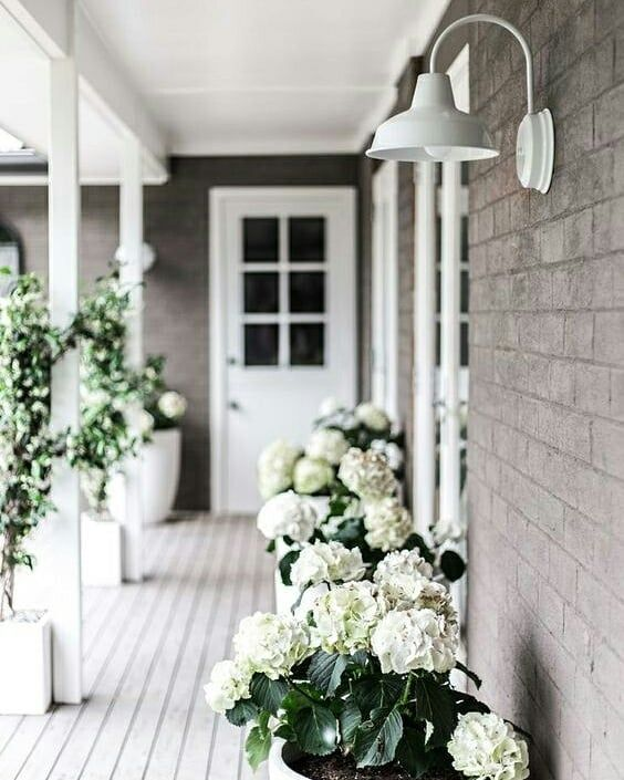 PINTEREST PICKS// Which would you prefer… a floral haven full of colours and f… – Bridget Downey